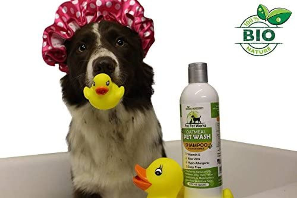 Pro Pet Works All Natural & Organic Oatmeal Puppy/Pet Shampoo + Conditioner-Hypoallergenic and Soap Free Blend with Almond Oil for Allergies & Sensitive Skin-17oz (1pk)