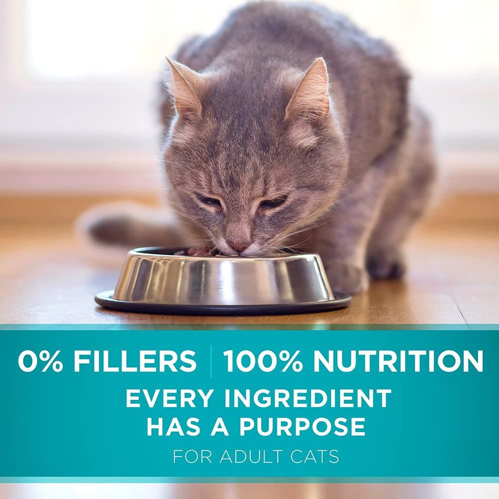 Purina ONE Tender Selects Blend Adult Dry Cat Food