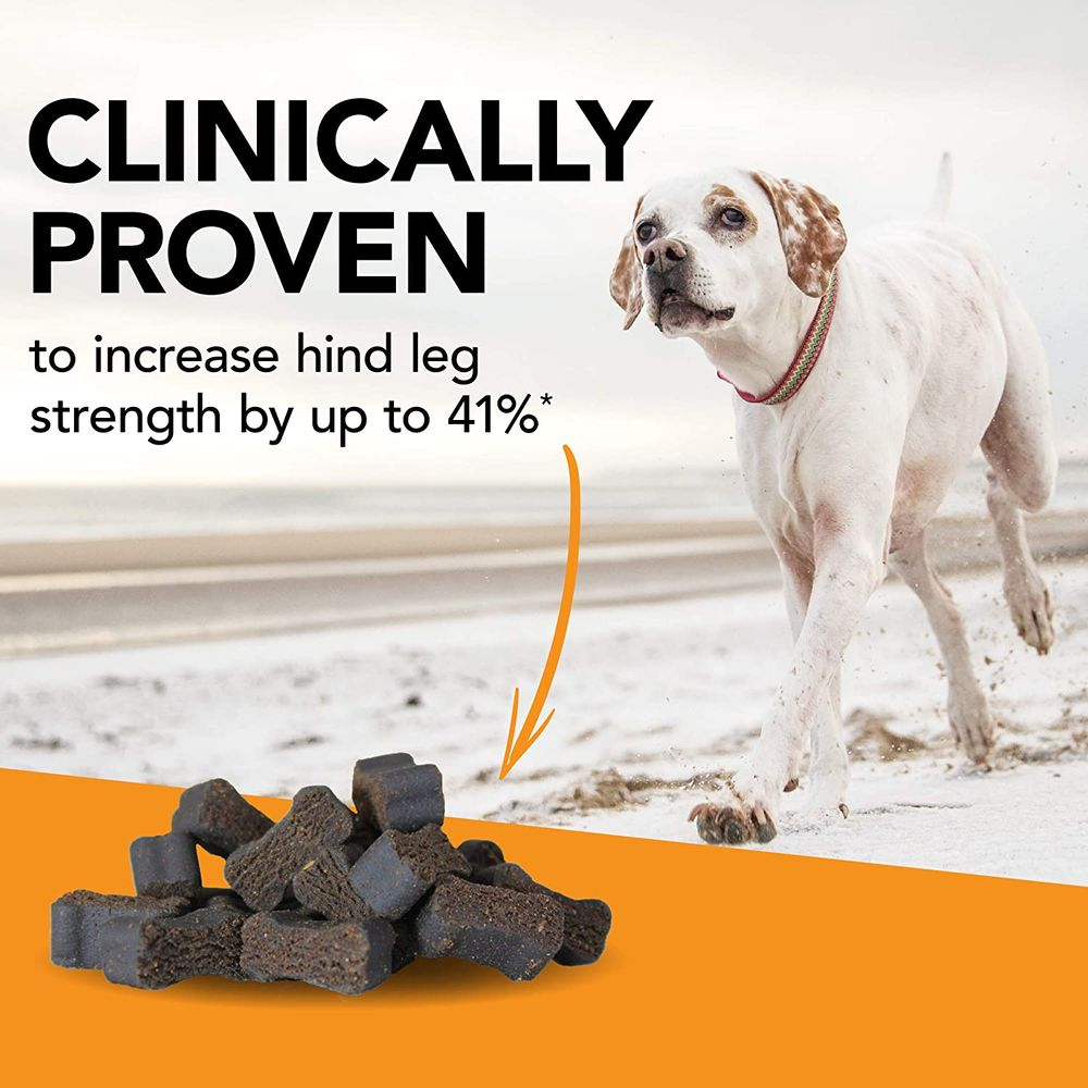 VetriScience Laboratories - Glycoflex 3 Hip & Joint Support for Dogs, with Glucosamine, DMG, MSM & Green Lipped Mussel. 120 Bite Sized Chews