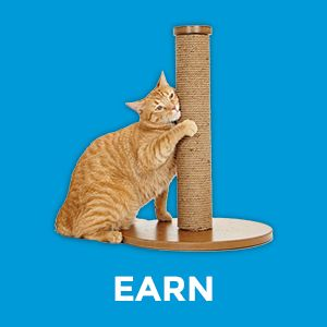 paw pints;cat litter clumping;clump and seal;clump cat litter;clumping cat litter;rewards program