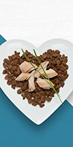 Kibble with flakes of salmon in heart shaped bowl