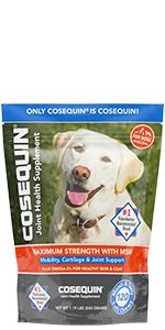 Cosequin Maximum Strength Plus MSM and Omega-3s Soft Chews for Joint Support and Skin & Coat Health