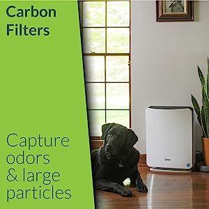 Winix Carbon Filter