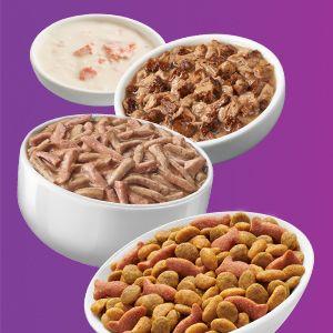 Bowls of Friskies dry, wet and pate cat food varieties