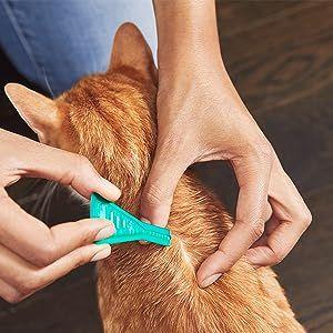 frontline plus flea tick treatment prevention medicine medication drops