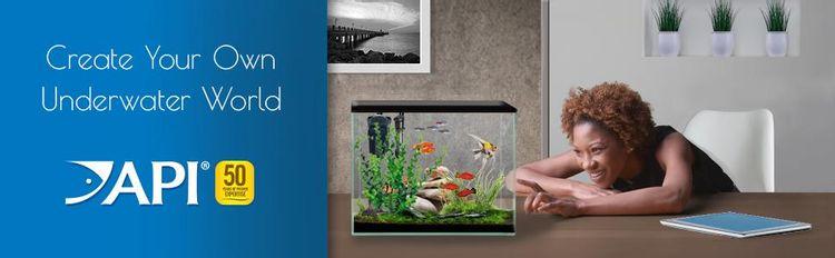tetra betta guppies cichlids goldfish tropical fish algae control ammonia test kit aquarium bacteria