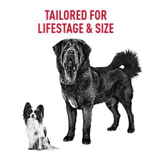 Royal Canin dog formula is tailored for dog lifestage & size from Papillon puppy to a Mastiff adult