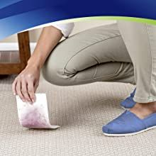 Stain remover; bisell; pet stain; carpet cleaner; best stain remover; blood stain remover;