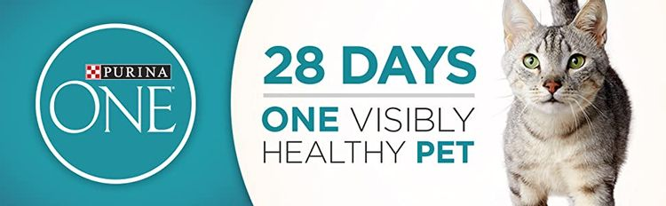Purina One. Twenty eight days, one visibly healthy pet.