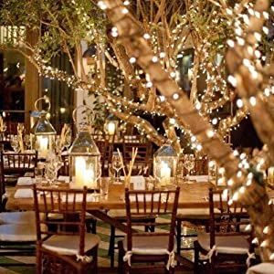 string lights go up and strang on a tree or branch. They are flexialbe perfect for any creation